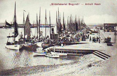Anholt som fiskerihavn 1908